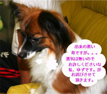 yuzu061012-5.jpg