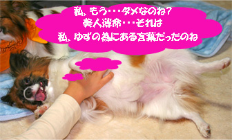 yuzu061018-2.jpg