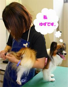 yuzu061019-1.jpg