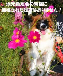 yuzu061019-3.jpg