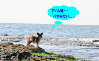 yuzu061022-18.jpg