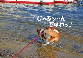 yuzu061022-5.jpg