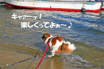 yuzu061022-6.jpg