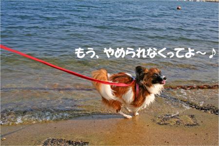 yuzu061022-7.jpg