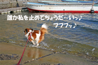 yuzu061022-8.jpg