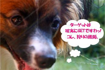 yuzu061027-2.jpg