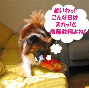 yuzu061028-2.jpg