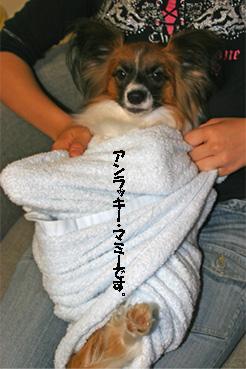 yuzu061031-4.jpg