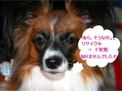 yuzu061031-6.jpg