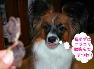 yuzu061101-2.jpg