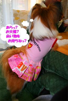 yuzu061113-1.jpg