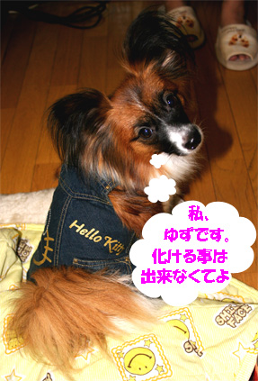yuzu061113-12.jpg