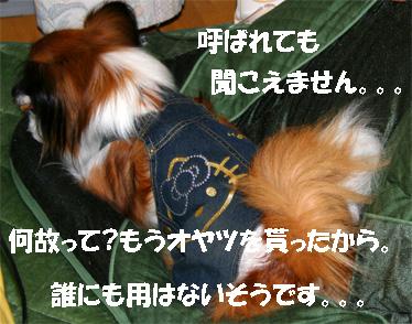 yuzu061113-14.jpg