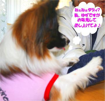 yuzu061113-2.jpg