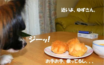 yuzu061113-3.jpg