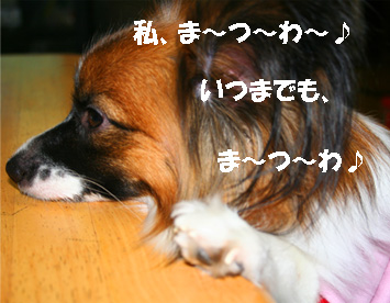 yuzu061113-4.jpg