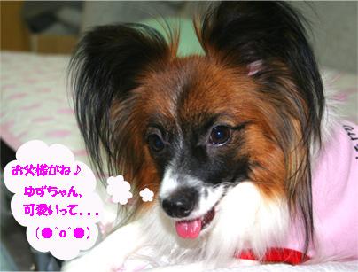 yuzu061113-9.jpg