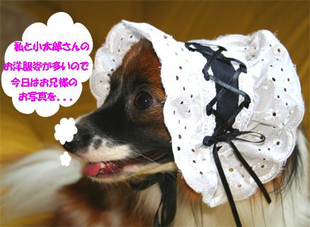 yuzu061116-2.jpg