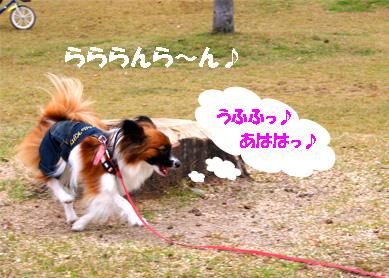 yuzu061120-2.jpg
