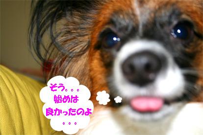 yuzu061127-4.jpg