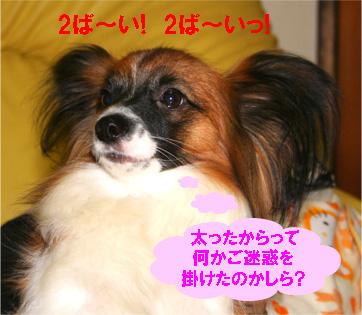 yuzu061212-2.jpg