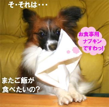 yuzu061212-3.jpg