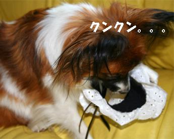 yuzu061215-1.jpg