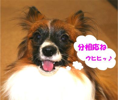 yuzu061223-3.jpg