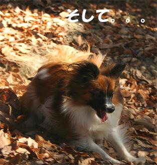 yuzu061226-2.jpg