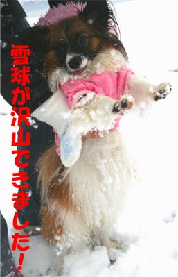 yuzu070107-2.jpg
