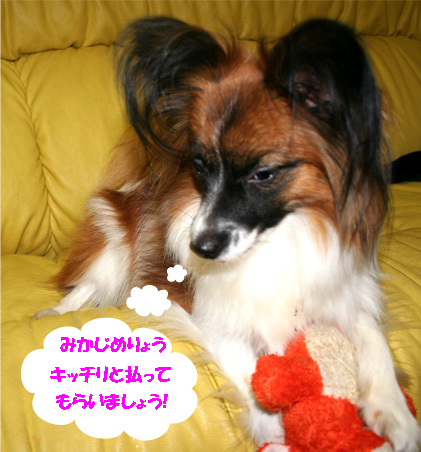 yuzu070111-2.jpg