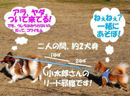 yuzu070118-2.jpg