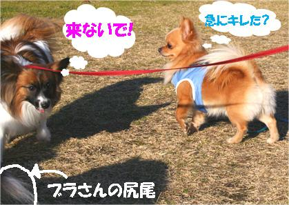 yuzu070118-3.jpg