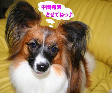 yuzu070122-2.jpg