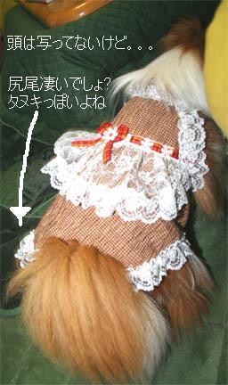 yuzu070124-2.jpg