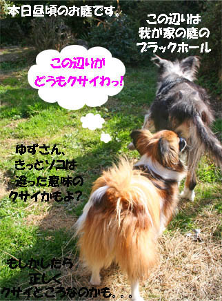 yuzu070125-2.jpg