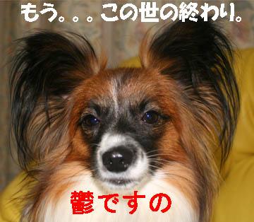 yuzu070126-4.jpg