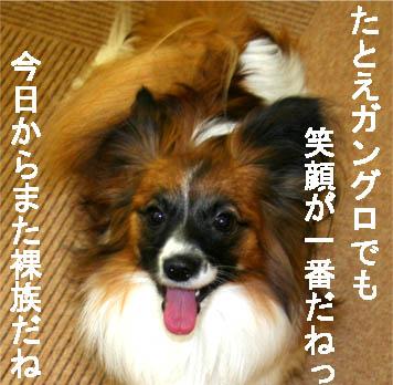 yuzu070126-7.jpg