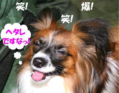 yuzu070201-2.jpg