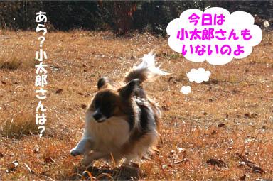 yuzu070204-4.jpg