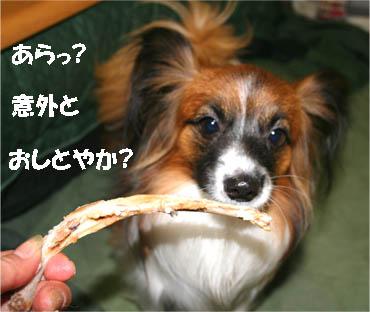yuzu070219-1.jpg
