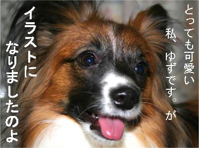 yuzu070223-1.jpg