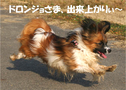 yuzu070306-4.jpg
