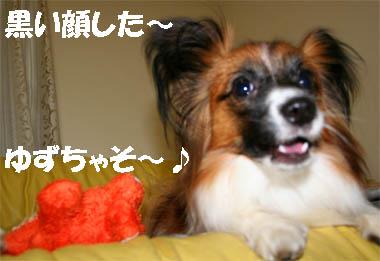 yuzu070309-2.jpg