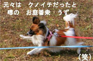 yuzu070317-3.jpg