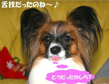 yuzu070328-6.jpg