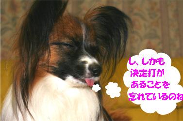 yuzu070330-2.jpg