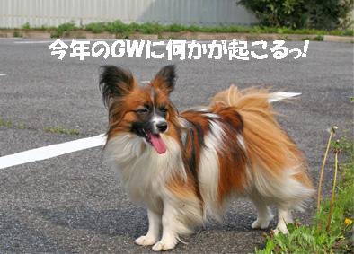 yuzu070412-2.jpg