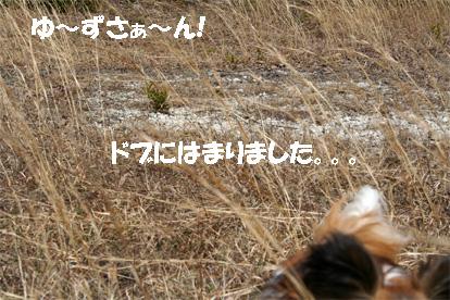 yuzu070417-6.jpg
