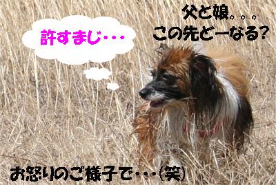 yuzu070417-8.jpg